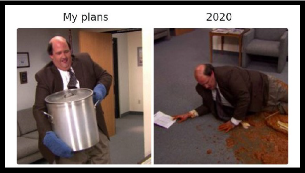 Best memes of 2020, best pandemic memes